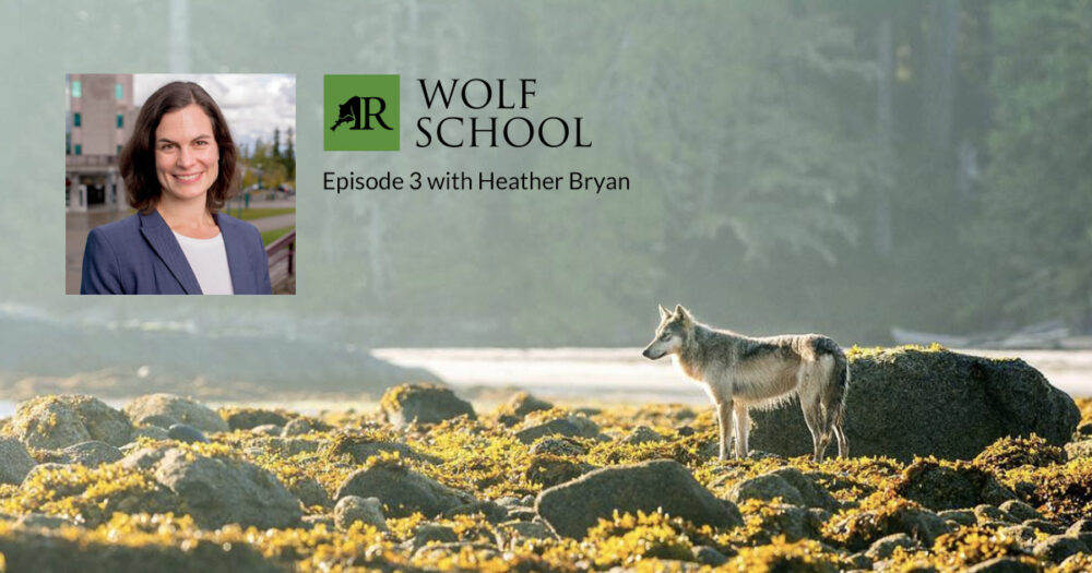 Wolf School with Heather Bryan.