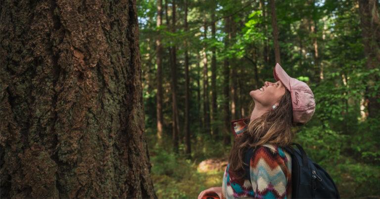 Big tree hunting on Salt Spring Island