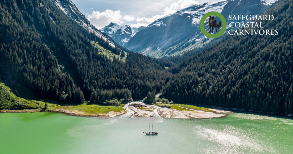 Mapleleaf sits in a green stretch of water surrounded by rivers and mountains of the Kitlope Conservancy.