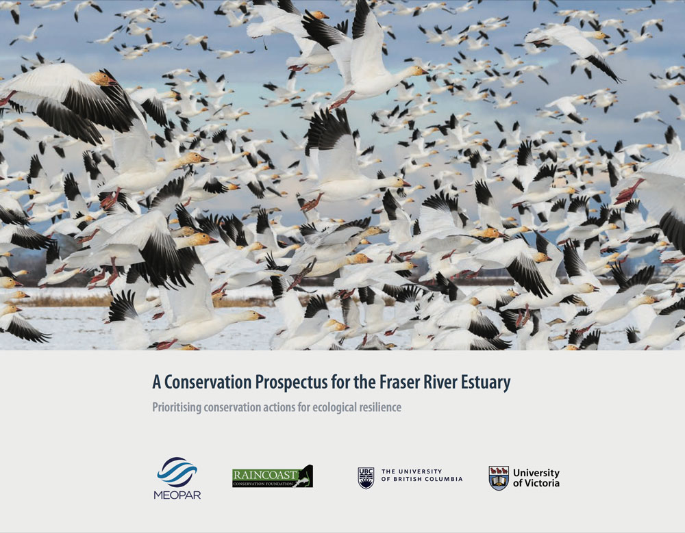 A Conservation Prospectus for the Fraser River Estuary.