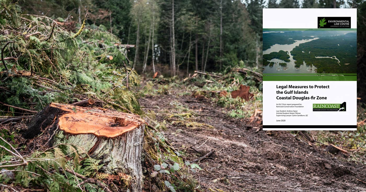 Cover of the Environmental Law report from UVic (ELC) floating over a photo of a tree stump.
