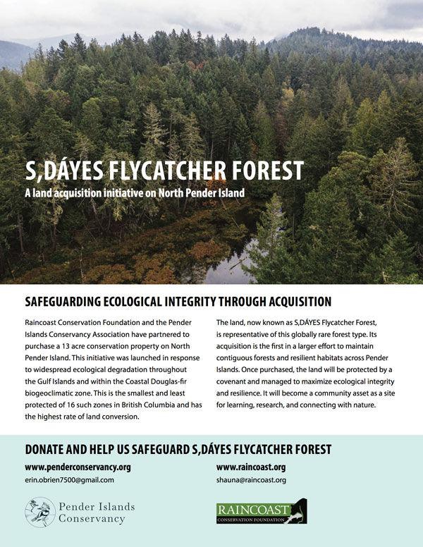 S,DÁYES Flycatcher Forest acquisition brochure cover.