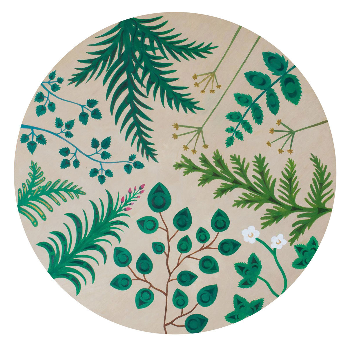 Circular painting, with plants of all varieties arranged to point toward the centre, by Sarah Jim.