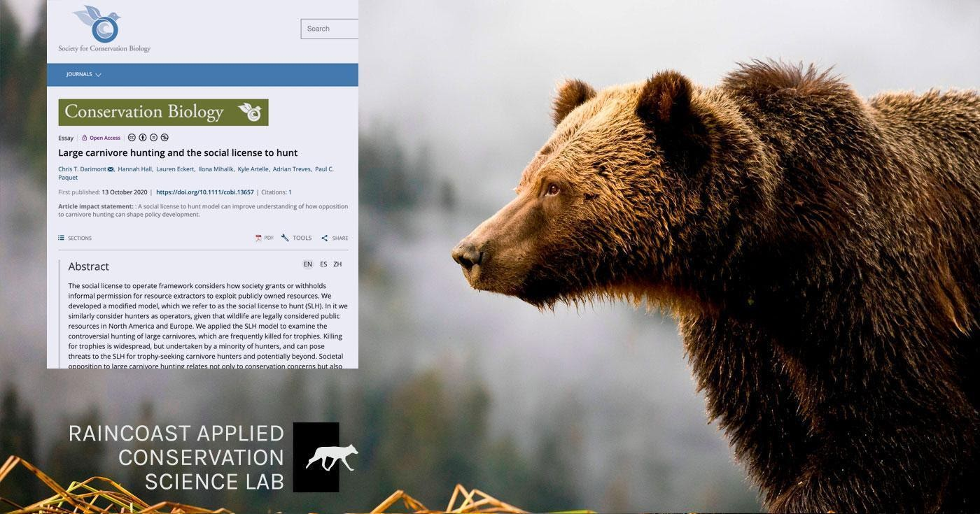 A snapshot of the Conservation Biology research article floats in front of a giant grizzly bear in the mist.