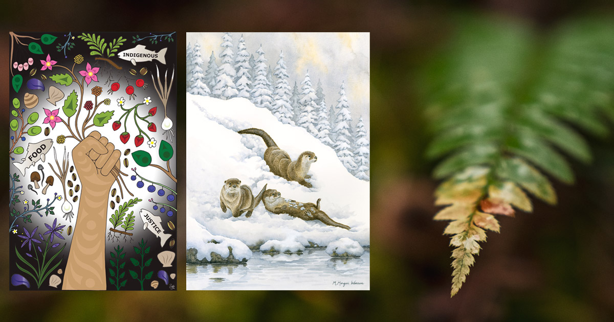 Two painting float in the foreground of an out of focus fern from Flycatcher Forest.
