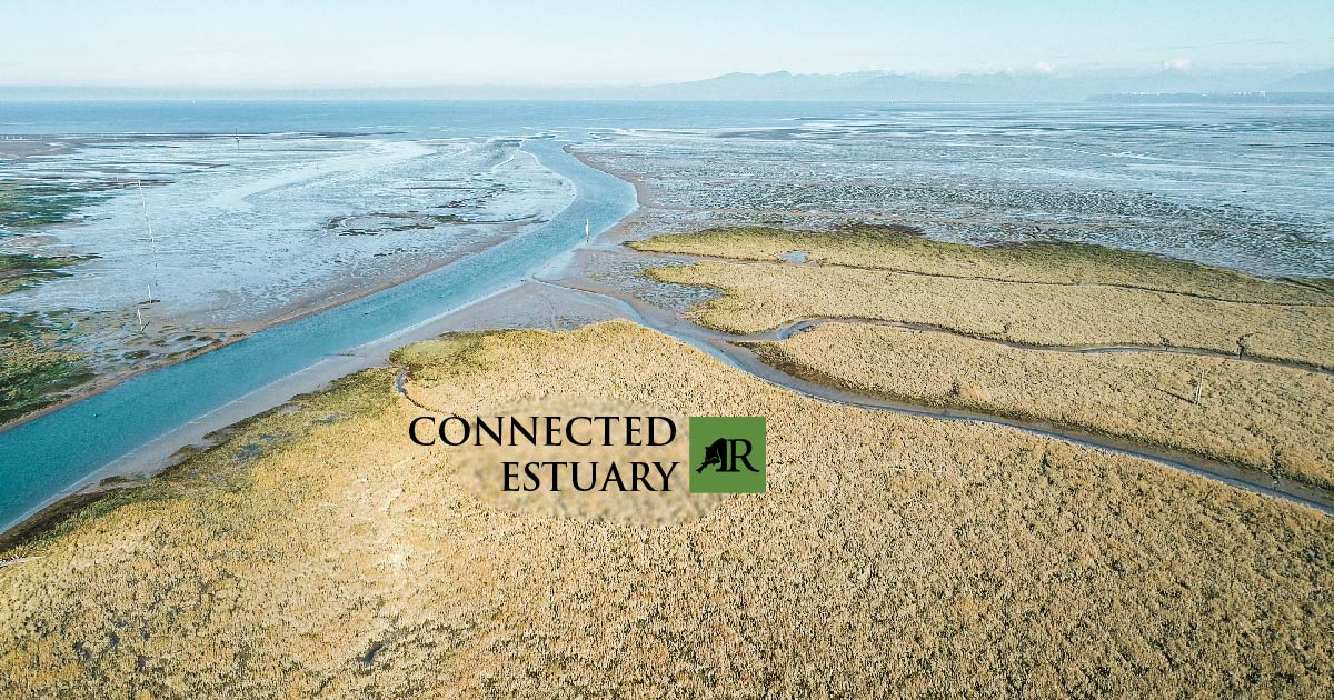 An high vantage point view of the Fraser River Estuary with an A Connected Estuary logo over the iamge.