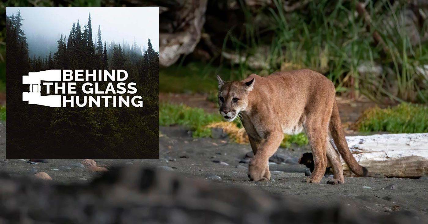 Behind the Glass Hunting logo floats over top of a stunning image of a cougar on a beach.