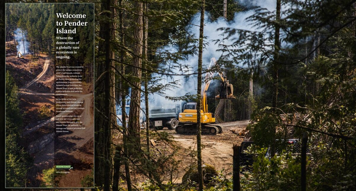 A backhoe works on a cutblock on Pender Island, with remaining trees and smoke scattered around the edge.