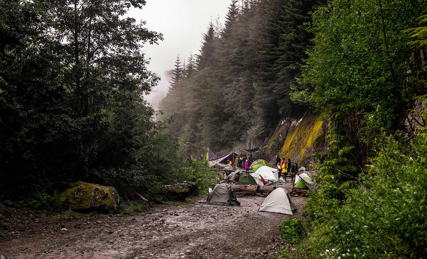 Tents on a logging road at Waterfall camp.