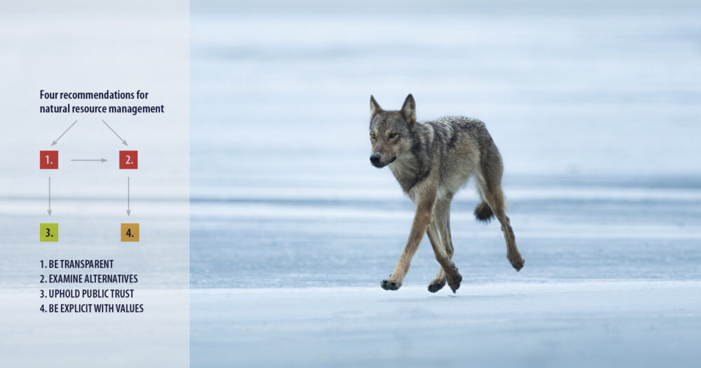 A wolf prances across the ice with all four feet frozen in time floating above the ice, a chart floating in the distance.