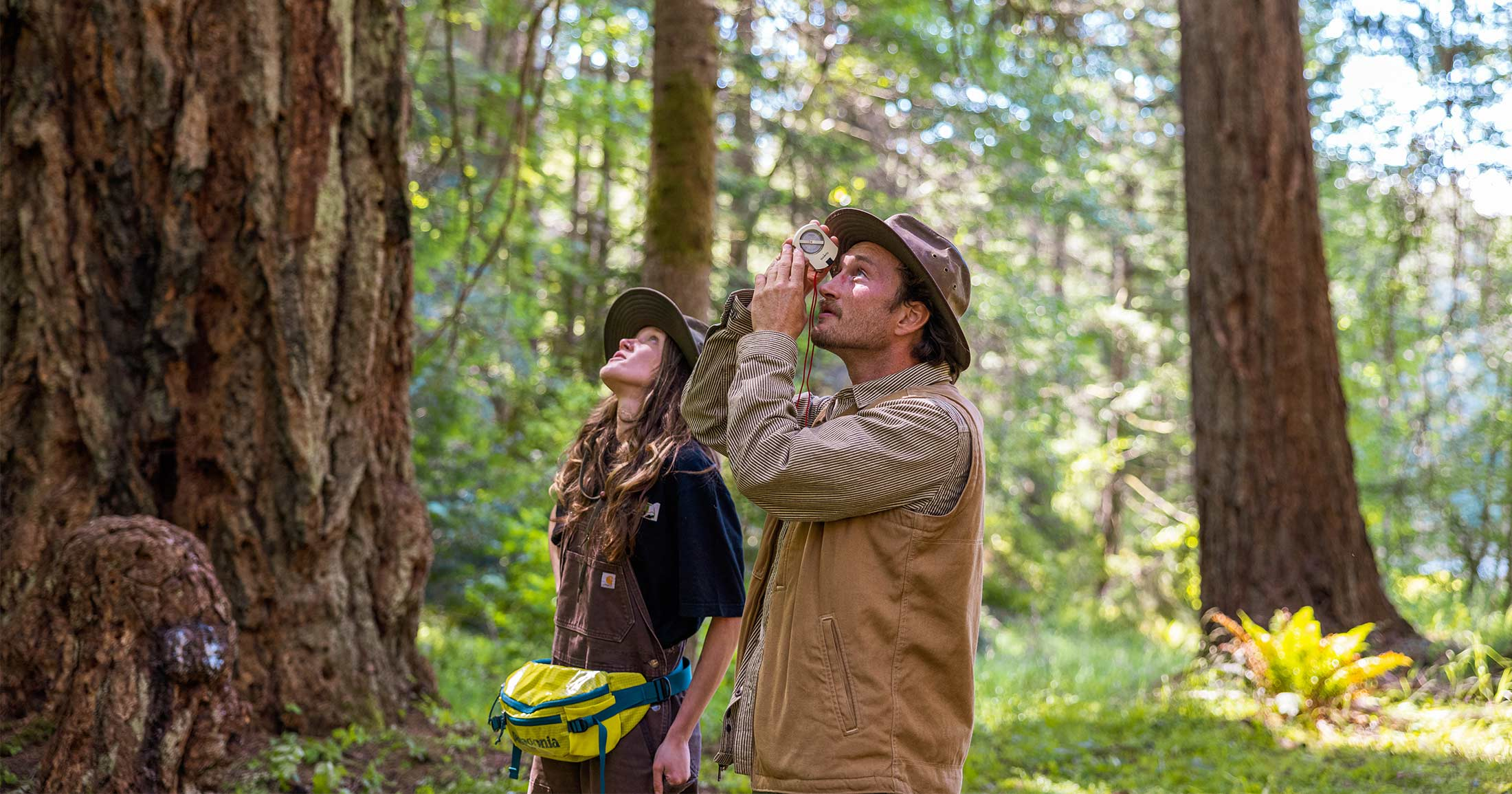 Two people looking up at a tree with one person measuring the height of a tree using an inclinometer.
